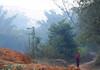 Morning Path (cormend) Tags: morning travel woman mist trekking trek canon eos asia state hiking path burma hike myanmar inle farmer southeast shan touring birmanie kalaw 50d cormend