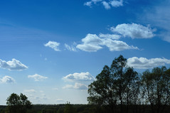 solarashii ka na (Konstantin Leonov) Tags: sky digital raw gimp filter polarizer f8  copyleft nikkor50f18 ufraw colorfilter freephoto plfilter hoyapl nocopyright freeimage cc0 d5100 noattributionrequired