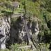 Piccolo ponte sospeso ai margini di Baños