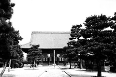 百万遍知恩寺 (M's photo since 1999) Tags: leica monochrome 3a f35 百万遍 summaron 35cm 知恩寺