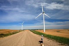 IMG_5102 (Neil Zeller Photography) Tags: family vacation sky green windmill power wind generator alberta prairie pugs greenenergy