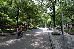 Shanghai University, China