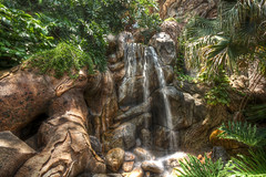 Waterfall (grandalloliver) Tags: vacation nature landscape waterfall orlando florida sigma wideangle disney disneyworld hdr animalkingdom treeoflife sigma1020mm photomatix rebelxsi canonxsi grandalloliver grandalloliverphoto