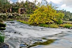 DSC_3012 (zeusch) Tags: tasmania gorge launceston cataractgorge firstbasin launcestonbasin launcestoncataractgorge