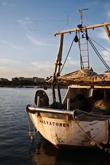 Salvatore (Rob McFrey) Tags: sardegna italy birds ed harbor boat nikon italia sardinia ship flamingo rob porto roberto nikkor f4 cagliari vr f4g 24120mm 24120 susiccu d700 felicotteri mcfrey defraia nikkor24120mmf4gedvr