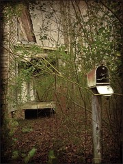 """Hey, Pa?  Do You Think the Mail Will Ever Come???"" (EdgecombePlanter) Tags: abandoned overgrown mailbox nc vines waiting moody sad decay empty deteriorated decayed tangled hopeful weedy"