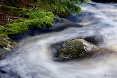 A stream and a stone (just.like.that.) Tags: wild white green nature water stone forest river moss stream exposure sweden småland filter foam rush nd after brook sverige polarizer rains pol rushing longtime patricivan