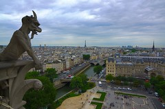 View from the top of the Notre Dame in Paris (WilliamMarlow) Tags: paris france eiffeltower notredame gargoyle cc creativecommons 2012