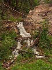 Waterfall near Sunspot, NM (jamesclinich) Tags: newmexico nm waterfall trees availablelight tripod olympus omd em10 jamesclinich corel paintshoppro topaz denoise adjust clarity detail