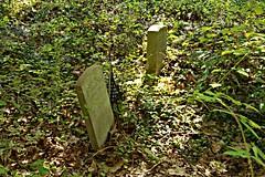 IMG_7626 (RARstudios) Tags: newhopecemetery abandoned cemetery rarstudios newhope
