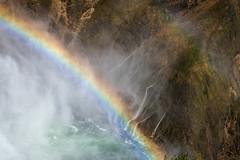 Grand Canyon of the Yellowstone (HubbleColor {Zolt}) Tags: uncletomstrail grandcanyonoftheyellowstone loweryellowstonefalls travel wy wyoming yellowstonenationalpark