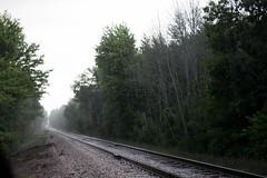 Rhythm of the Rails (Jules (Instagram = @photo_vamp)) Tags: tracks train traintracks photochallenge rainyday summer august rain railroad railroadtracks trees