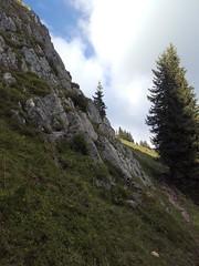 ascent to Kampl (formilock) Tags: kampl knoppen kainisch salzkammergut steiermark styria alpen alps alpi alpes austria ausseerland berge berglauf trailrunning traillauf mountains montagnes mountain österreich outdoor ostalpen totesgebirge