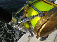 Reel nice picture (Bill Billings) Tags: branchoffice strozier deepseafishing