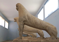 20160714_132847_low (Cinzia, aka microtip) Tags: delos cicladi grecia archeology antichit archaelogy unescoworldheritagesite mithology sanctuary ancientgreece archaeologicalmuseum sculpture lion lions