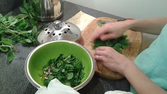Beth making Bee's Pasta (Ken_Mayer) Tags: uploadedwithflync basil oliveoil cutting board