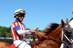 2016-08-28 (30) r6 J. D. Acosta on #1 Northern Rail (JLeeFleenor) Tags: photos photography md maryland statefair horseracing annual racing timonium fatrgrounds jockey   jinete  dokej jocheu  jquei okej kilparatsastaja rennreiter fantino    jokey ngi horses thoroughbreds equine equestrian cheval cavalo cavallo cavall caballo pferd paard perd hevonen hest hestur cal kon konj beygir capall ceffyl cuddy yarraman faras alogo soos kuda uma pfeerd koin    hst     ko  jdacosta chestnut
