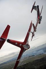 Snowbirds (aeroman3) Tags: comoxvalley snowbirds formation flying airforce tutor aircraft ct114 aerials airdemonstration acaf robertbottrill comox bc canada