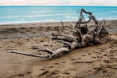 _DSC0985 (. ..::..::::....:::::m.trinciarelli photo::..:..) Tags: mare tramonto cielo spiaggia maredinverno pace