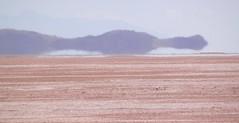 Miraggio - Mirage (magellano) Tags: bolivia salar uyuni paesaggio landscape miraggio mirage astratto abstract
