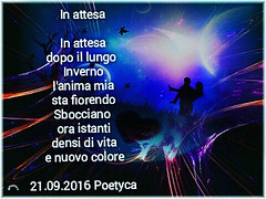 In attesa (Poetyca) Tags: featured image immagini e poesie sfumature poetiche poesia