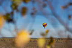 DSC00067.jpg (karinkasky) Tags:  airsiberia  balloon flight