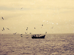 old times (Tom ) Tags: ocean brazil sky beach brasil vintage landscape waves sopaulo sp fotografia fotografo beachscape tumblr vsco aredead instagram instagramer vscofilm vscocam