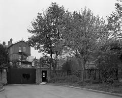 Geraldine Mary Harmsworth Park, London, SE1 (Paul David Kemp) Tags: street city bw white london film walking landscape photography walks large photograph 4x5 format 135mm 5x4 adox wista adoxchs100