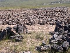 Turf (mcginley2012) Tags: peat connemara bog turf n8 footing