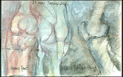 Knees front. It's a fibular thing. 29 May, 2012. (Sharon Frost) Tags: paintings drawings sketchbook anatomy bones skeletons tibia knees journals fibula patella sharonfrost daybooks