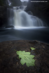 Chapman Falls (Steady_Habits) Tags: park blue mist green canon photography waterfall long exposure stu state connecticut ct falls le munro f35 sigma1020mm devilshopyard chapmanfalls t2i bwnd110 tiffencpl