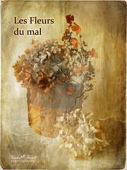 Les fleur de .... (Kerstin Frank art) Tags: texture photoshop ceramic vase hydrangea lesfleursdumal stonevare skeletalmess plaingwithbrushes