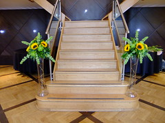 DSCF3592 (Vicky Spence) Tags: wedding flower green glass yellow alnwick northumberland staircase sunflower bloom vase tall blackmore centrepiece solidago molucella craspedia floralquarter