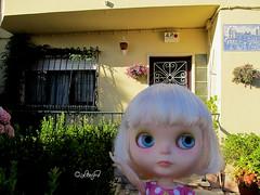 Blythe a Day July 9 - Home