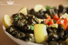 "Grape Leaves . (Queen333"" ) Tags: canon eos flickr mark ii 5d   ksa    24105      ghadah   onaizah"