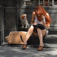 (Cazador de imgenes) Tags: madrid street summer espaa woman dog pet girl female bag donna mujer spain chica candid centro streetphotography perro verano streetphoto 12 bolsa redhair espagne mascota perrito pelirroja spanien bolso spagna spanje 2012 ragazza spania chueca  spange