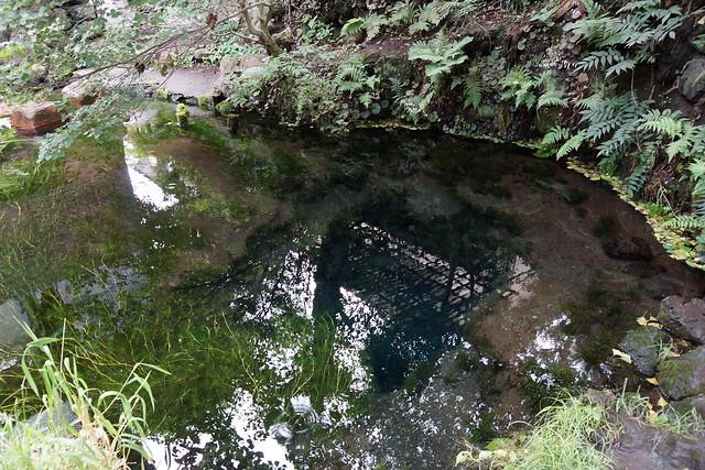 忍野八海 御釜池 Oshino Hakkai Okama Pond