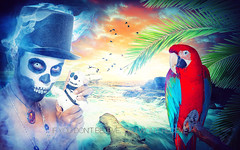 Caribbean Sight (Jack.Less) Tags: sea art birds skull freedom flying ship pirates flight creative surreal parrot believe pirate caribbean sight receive jacopo vodoo spina voodooman jackless jacklesspop jacklesshop voodoohat skulldom