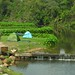 Campsite by the water, Khao Yai National Park, Thailand
