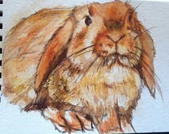 Just a quick watercolour of Mylo :) (mylo_rabbit) Tags: boy pet baby cute rabbit bunny bunnies art love face animal mouth painting ginger sketch furry friend sweet drawing expression adorable handsome fluffy cutie whiskers watercolour sweetie draw bun mylo houserabbit