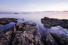 Dinard Dawn (blieusong) Tags: longexposure brittany coastline dinard ndfilter musles harbourfort