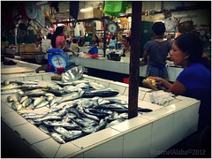 fish (Rhannel Alaba) Tags: city philippines cebu minglanilla pido alaba iphoneography rhannel