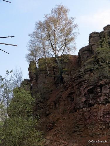An der Louheck bei Diddeléng (2012-04-05 -08)