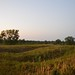 "Illinois Land for Sale - 480 Acres in Knox County • <a style=""font-size:0.8em;"" href=""http://www.flickr.com/photos/66358149@N06/7698832832/"" target=""_blank"">View on Flickr</a>"