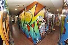 FLERT AUB 3EK (Chasing Paint) T...