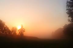 Morning view (Tobi_2008) Tags: sonnenaufgang sunrise sonne sun himmel sky bume trees arbres landschaft landscape sachsen saxony deutschland germany allemagne