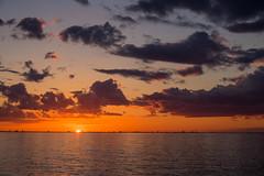 Sunset Sky (Infomastern) Tags: bridge sunset sea sky cloud himmel bro hav solnedgng moln sibbarp resundsbron geolocation geocity camera:make=canon exif:make=canon geocountry geostate exif:lens=efs18200mmf3556is exif:focallength=40mm exif:aperture=80 exif:isospeed=100 camera:model=canoneos760d exif:model=canoneos760d