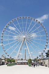 IMG_5261 (Margaux SP) Tags: paris france capital summer holiday t voyage amoureux grande roue jardin des tuileries ville couleur vintage hold