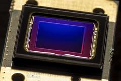 S is for Sensor  -  HMM (syeshop) Tags: sensor gopro 123 12mp macro macromonday canon canon7dmarkii 100mmf28lmacro kenko 14x extender 500d closeup 3 black