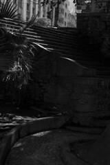 Largo da Memria, SP (Th. C. Photo) Tags: largo memoria largodamemoria sp centro downtown downtownsp centrosp street streetphotography streetphoto streetphotographysp photography fotografia rua fotografiaderua pretoebranco blackandwhite pb bw